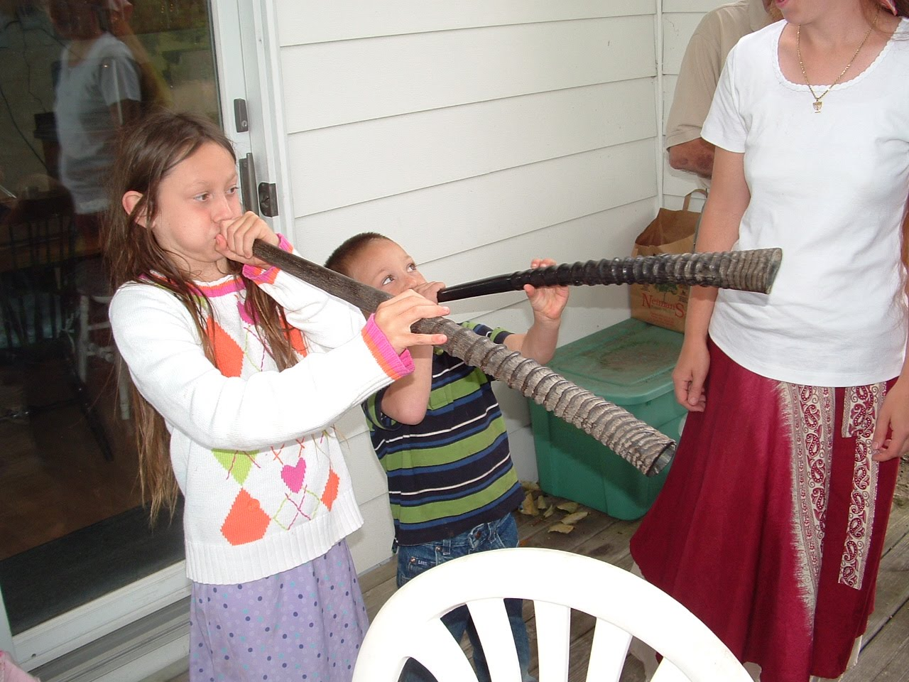 Rams Horn Shofar Sound Rams Horn Shofar Sound Sale For