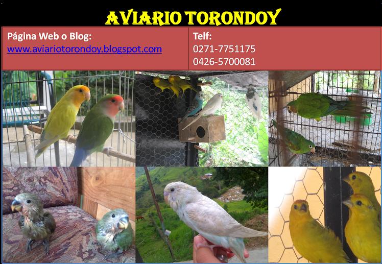 Aviario Torondoy