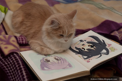 Anime Nekomimi Cat