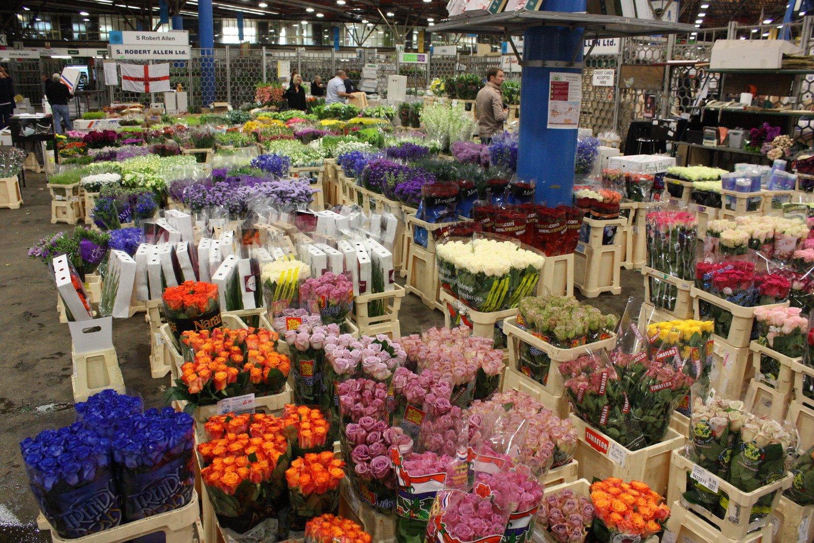 Everlasting Farm Covent Flower Market