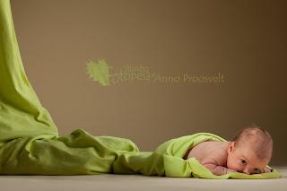 beebi ronib välja kookonist, Fotopesa stuudio Anno Proosvelt