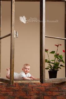 Fotostuudio  aken lahti-beebi aknalaual