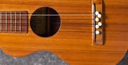 NOT a Guitar