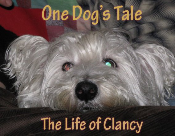 The Life of Clancy