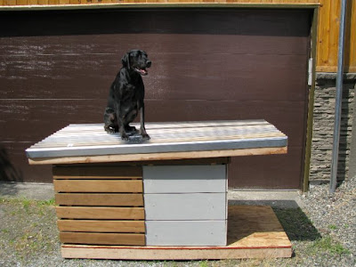 The Prefab Dog House1