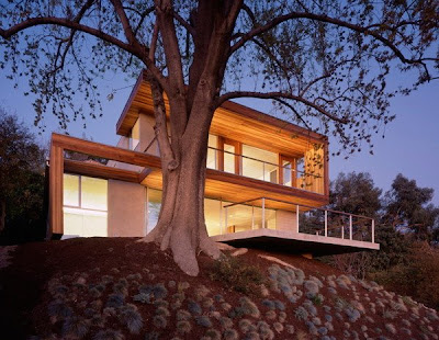 Modern eco friendly tree house by standard interiors world for Modern tree house designs