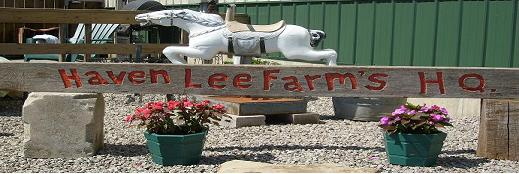 Haven Lee Farm