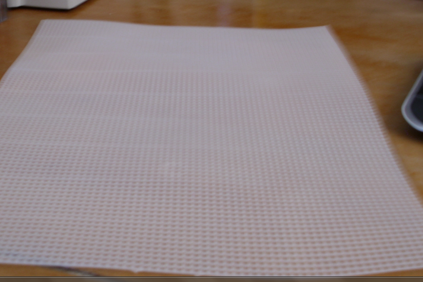 Freethoughtsoffreedragon project 1 plastic canvas for Plastic grid sheets crafts
