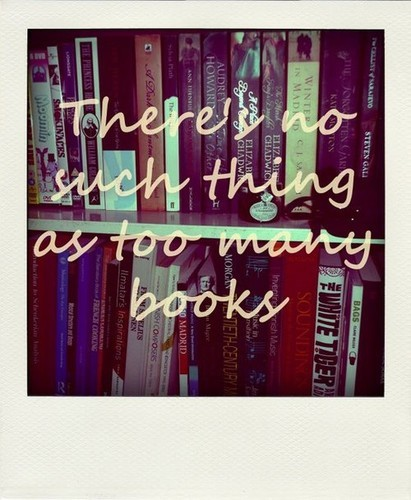 Vintage Lavender & Lace: Never too many Books ---- My Sentiment Exactly