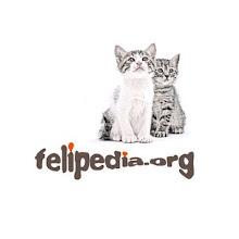 Felipedia.org