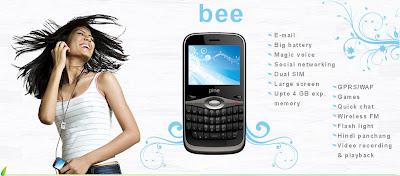 Pine Bee