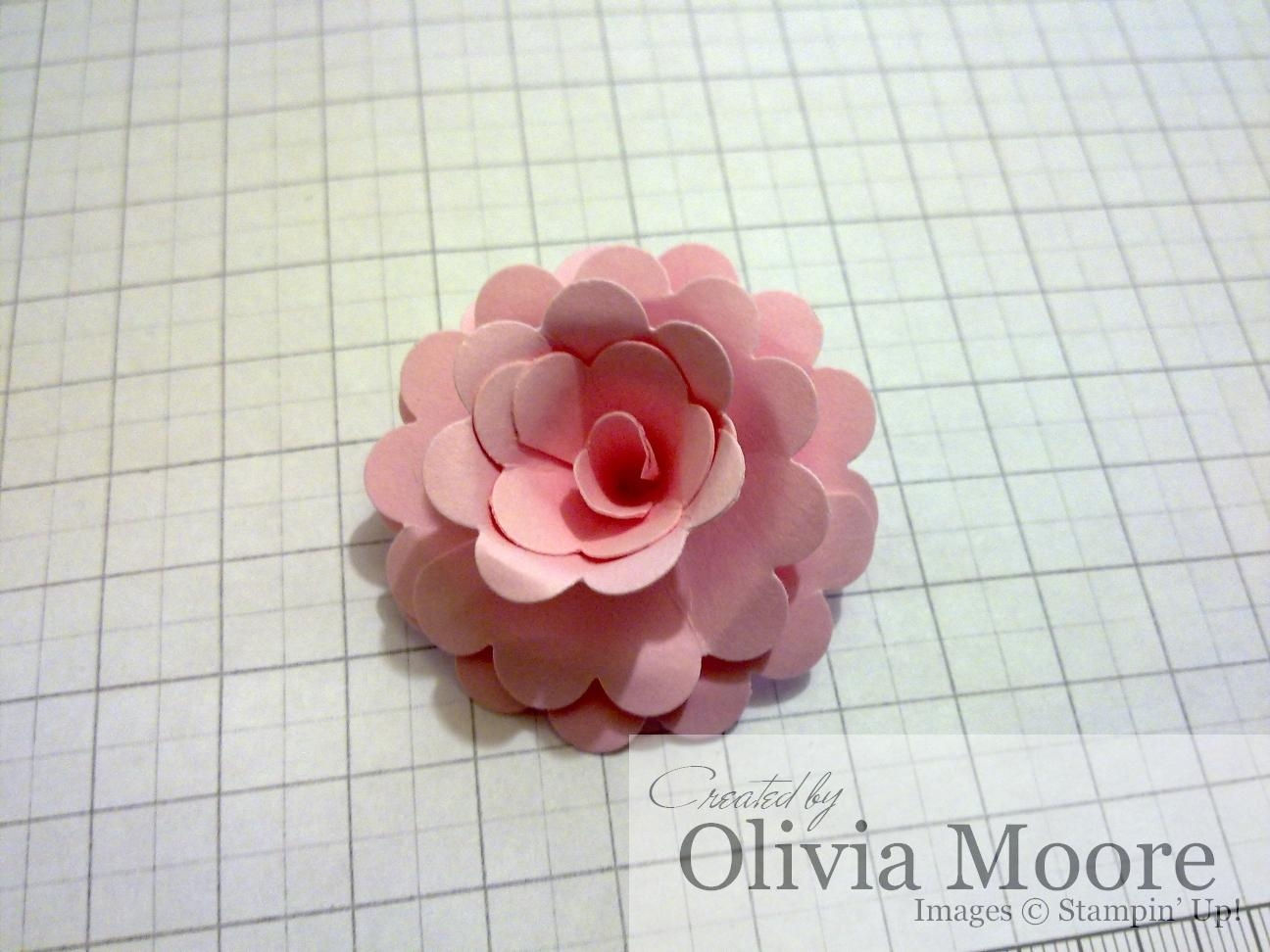 Paper escape olivia moore stampinup demonstrator australia i posted a tutorial yesterday for a 3d flower made from the fancy flower xl punch i have made another flower this time using the scallop circle punch mightylinksfo