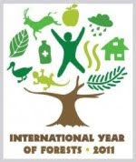 2011 - anno internazionale delle foreste