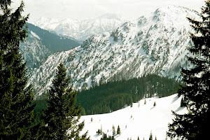 6 Unterm Fockenstein: links Halserspitze, Blauberge, mitte Guffert, rechts Ochsenkamp