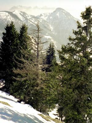 Blick zum Kaisergebirge