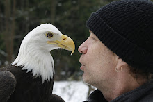 Beak to beak in a winter wonderland