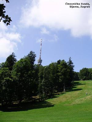 Činovnička livada - pogled na RTV toranj