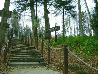 Stepenice do Činovničke livade