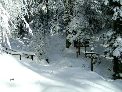 Prilaz Šumarevom grobu zimi