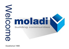 moladi construction system