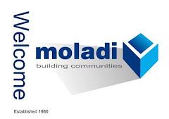 moladi construction system