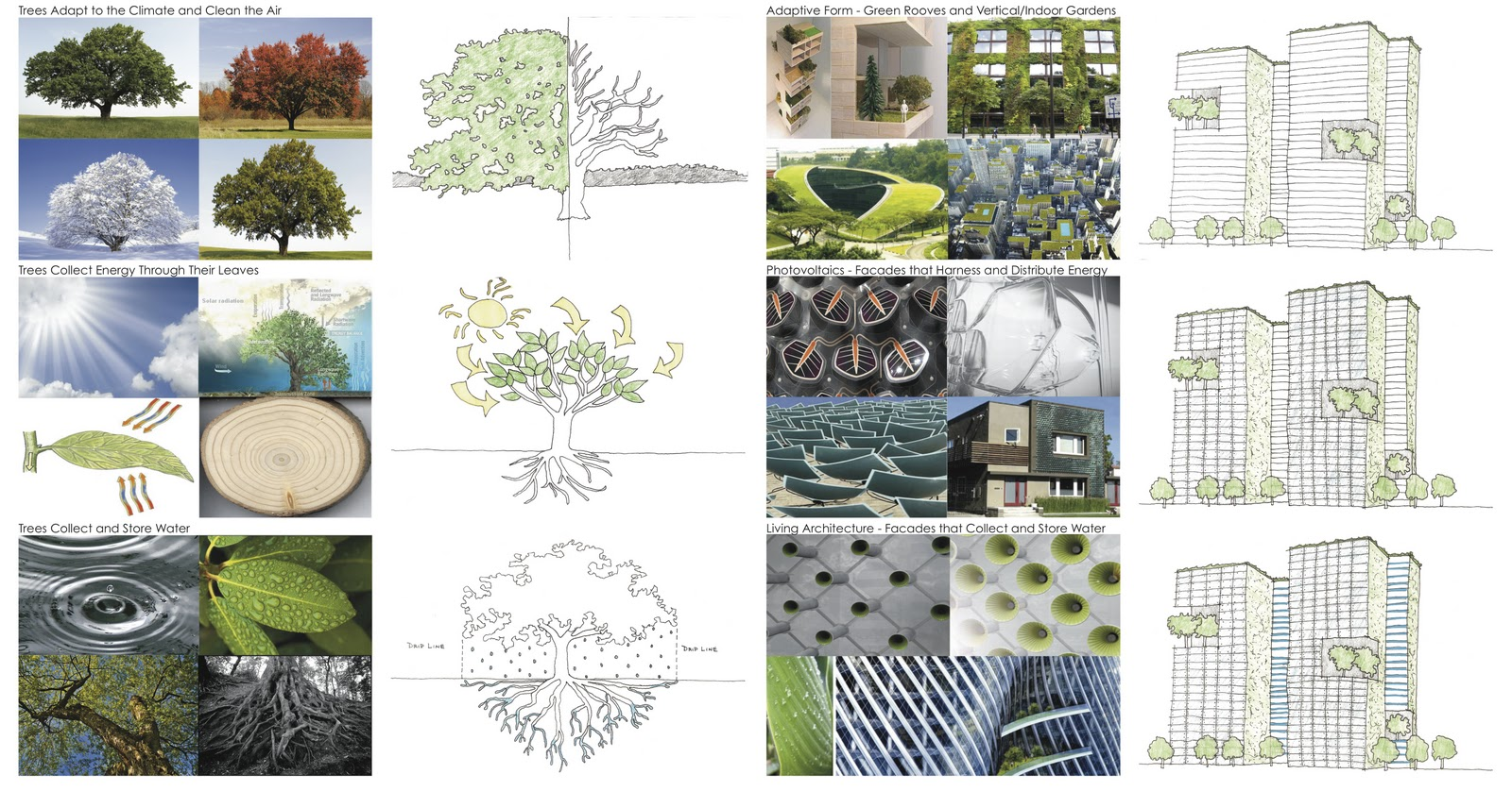 architecture thesis abstracts Free roman architecture papers, essays, and research papers.
