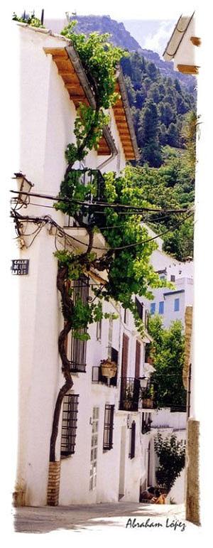 Cazorla. Calle Llera