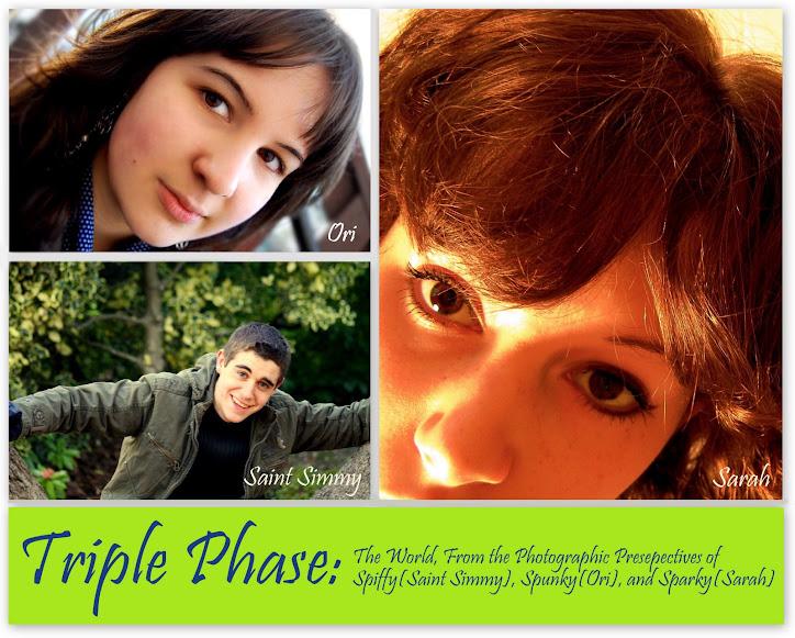 TRIPLE PHASE