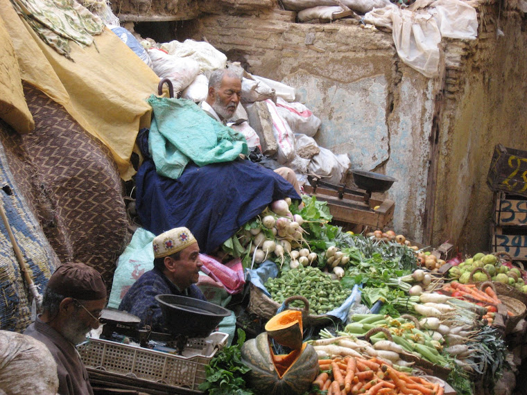 marocco 2008