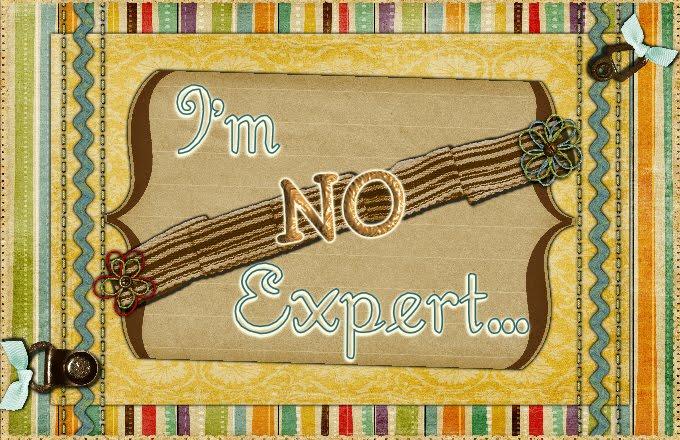 I'm No Expert...