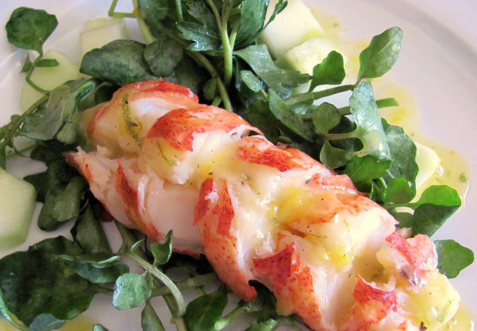 with fresh tomatoes butter poached lobster with fresh tomatoes steamy ...