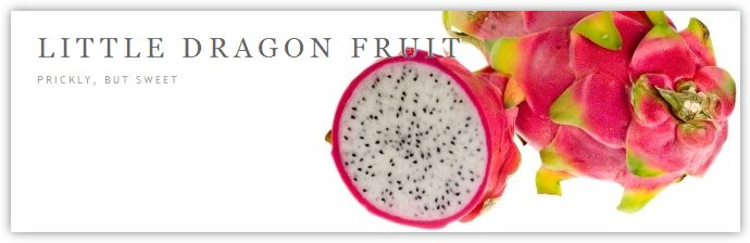 Little Dragon Fruit