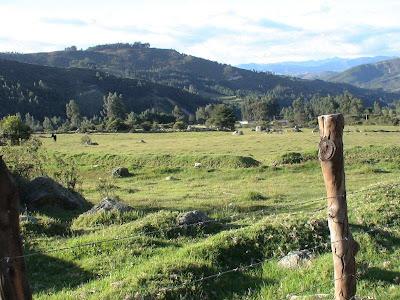 paisaje+del+campo+en+los+Andes+DSC02255+%281%29.jpg (800×600)