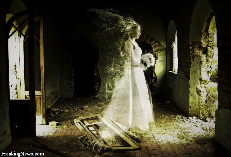 http://2.bp.blogspot.com/_StYRdM_sF0E/TMrxDcajzSI/AAAAAAAAATc/-_nYRlfPtZU/s1600/Ghosts.jpg