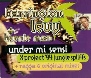 Barrington Levy & Beenie Man - Under Mi Sensi (Jungle Spliff) (X Project Remix)