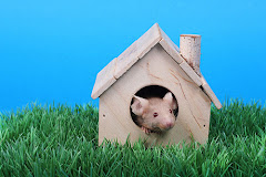 Mouse in her House