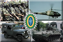 PROCESO DE TRANSFORMACIN EJERCITO DE BRASIL 2010