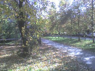 Осень в Софрино-1