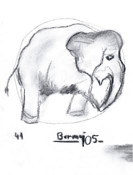 """""""Apunte de elefante al carboncillo"""", por Antonio"""