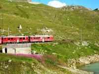 Wine and Rail: Poschiavo (CH) – Valtelline (IT)