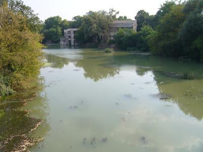 Tundzha River by Diana Park