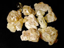 Frankincense the Medicinal Herb