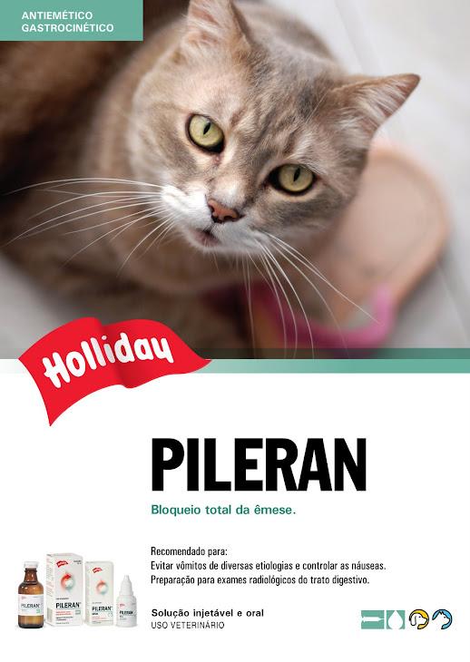 Pileran