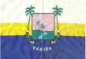 BANDEIRA DE VÁRZEA RN