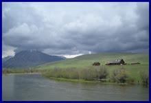 Montana Bliss