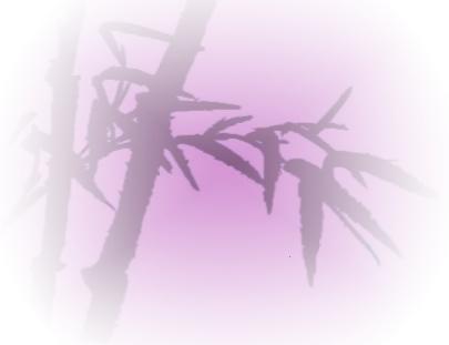 O Bambú