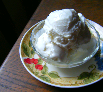 Low Carb Low Fat Ice Cream (with a secret ingredient, shh!)   Healthy ...
