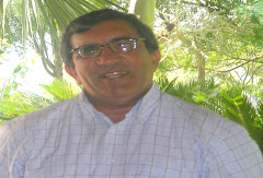 P. Juan Francisco Tejada Candelier, SDB (2006 - 2008)