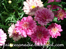 Flores para Gloria de cosas singulares