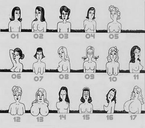 tipos de peitos e vagina